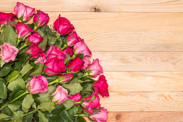 Fresh pink rose flower on wooden deck. For love or valentine day