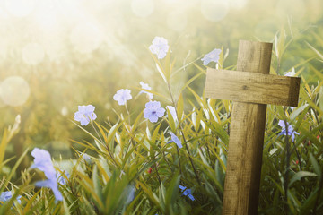 Wooden cross and purple flower with sunlight