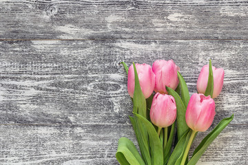 Background with bouquet of pink tulips on gray wooden boards. Pl