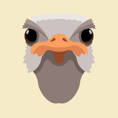 ostrich head  vector illustration style Flat