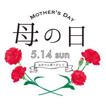 母の日 カーネーション