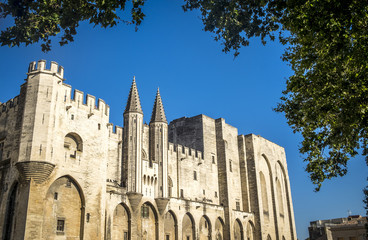 Exterior of Palais des Papes, UNESCO World Heritage Site, and ch