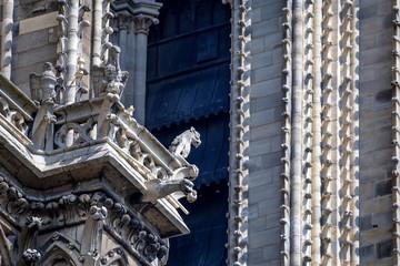 Gargoyles of Notre-Dame de Paris