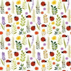 ladybird on a flower meadow