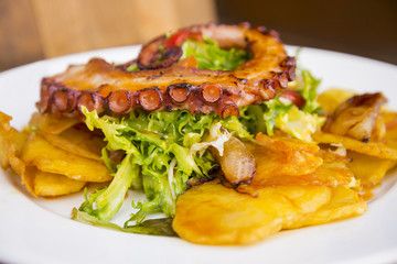 Colorful and tasty octopus salad