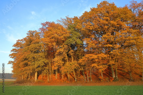 Herbst Landschaft Stock Photo And Royalty Free Images On Fotolia