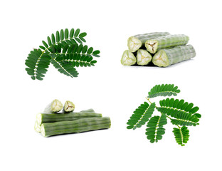 Moringa oleifera Lam and  Dried Moringa leaves   isolated on whi