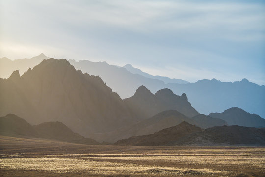 The sunny desert on the background mountain