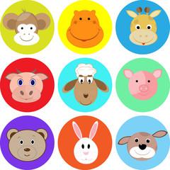 set cute animal head smiling circle color vector