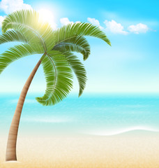 Beach with palm and clouds. Summer vacation background