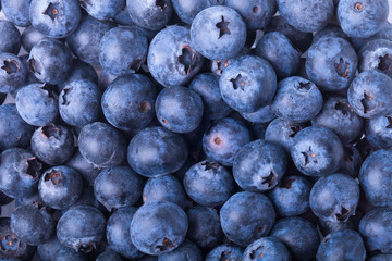 Pile of fresh big blueberry. Selective focus. Shallow depth of f