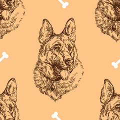 Seamless Pattern hand drawing German shepherd with bones