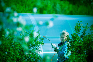 Woman is watering the trees in the garden