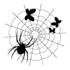 Vector black spider, butterflies and web silhouette