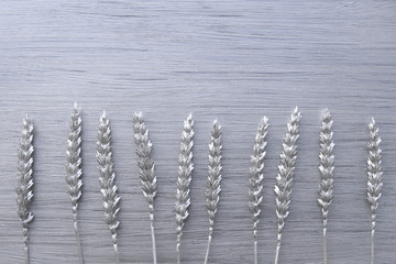 Wheat colored in silver on silver paint background. Florist decoration, natural wheat painted silver on silver background with empty place.