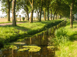 Ditch in Bunschoten-Spakenburg, Utrecht, Holland, NLD