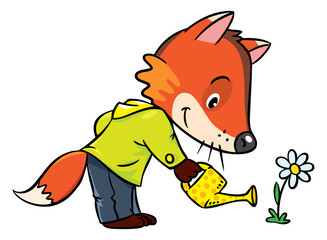 Little funny fox watering flower