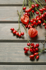 Fototapete - Rosa canina twigs (rose hip) on wooden background