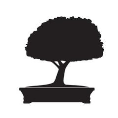 Black Bonsai Tree. Vector Illustration.