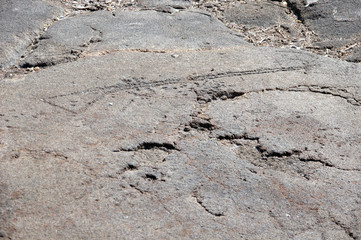 Petroglyphs, rock carvings