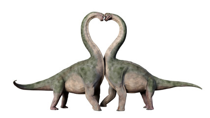 Brachiosaurus couple in love, forming a heart shape (3d illustration isolated on white background)
