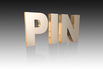 PIN lettering - 3D illustration