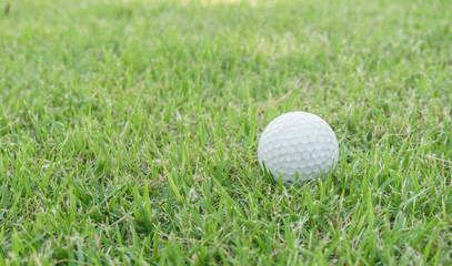 close up golf ball on the green