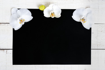 The black rectangle (A4 size) and a white wooden background decorated with white orchid flowers. Free space for your projects (notes).