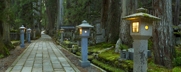 Fototapete - Path through Koyasan Okunoin cemetery, Wakayama, Japan