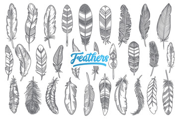 Hand drawn feather doodle set with blue lettering in vector
