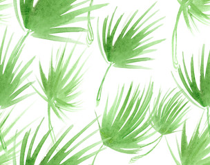 Seamless pattern with abstract light green palm tree leaves painted in watercolor on white isolated background