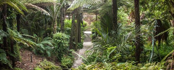 Auckland Domain Wintergardens, New Zealand.