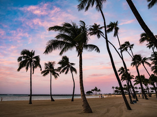 ハワイ オアフ島 ホノルル ワイキキ カハナモクビーチ