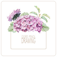 Background with beautiful spring flowers and plants drawn by hand with colored pencils. Pencil drawing. Place for text.