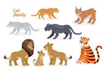 Cat family. Felidae. Pantherinae Tiger Lion Jaguar