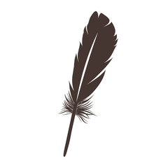vector illustration of dark brown feather isolated on white