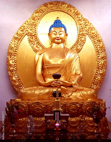 free download pictures of lord buddha