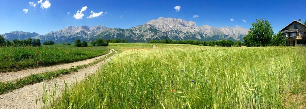panorama de la montagne de faro (vallée du champsaur )
