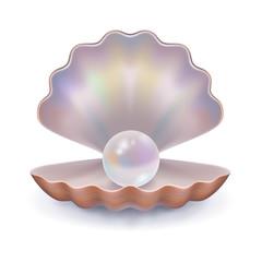 Pearl in open shell