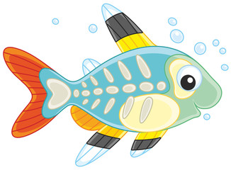 """Search photos """"x-ray fish"""""""