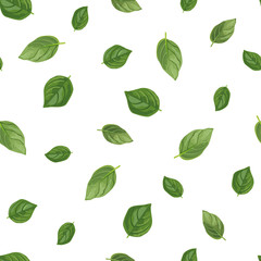 Basil seamless pattern. Organic product. Wrapping paper. Hand drawn vector illustration.