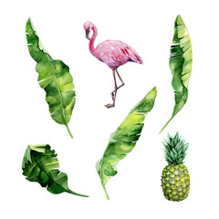 Watercolor illustration set of tropical leaves, dense jungle, flamingo bird and pineapple. Tropic summertime motif may be used as background texture, wrapping paper, textile,wallpaper design.