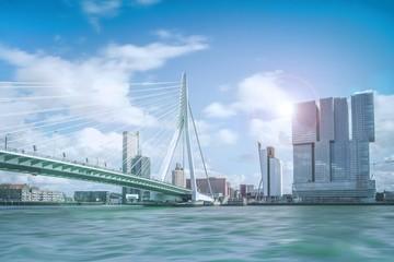 Foto auf Gartenposter Rotterdam Erasmusbrücke in Rotterdam
