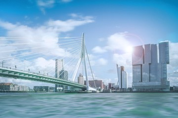 Acrylic Prints Rotterdam Erasmusbrücke in Rotterdam