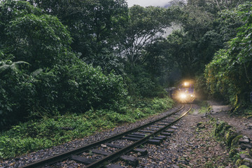 Train moving on railroad track amidst trees in forest