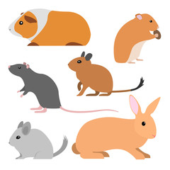 Set of cute rodents, vector isolated small domestic animals cartoon style. pet cavy, hamster, rat, degu, chinchilla, rabbit illustration. group of rodent pets, vector flat design.