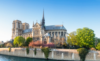 Notre Dame Cathedral in Paris on a bright afternoon in Spring Fototapete