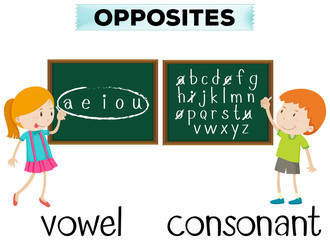 Opposite wordcard for vowel and consonant