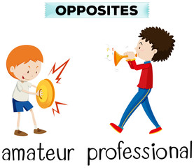 Opposite words for amateur and professional