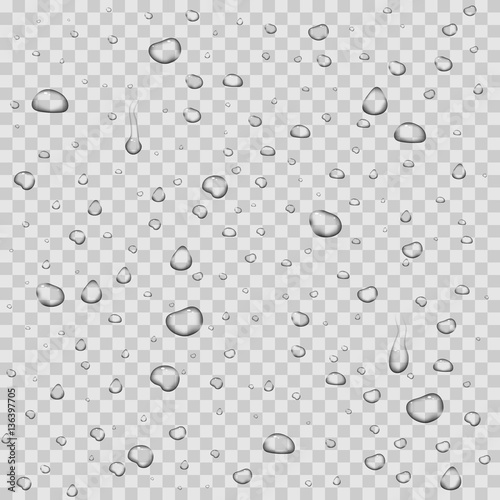 Water drops white background